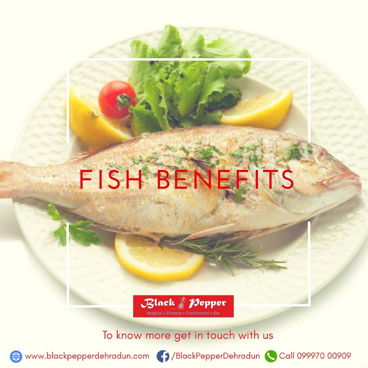 Black Pepper Restaurant: Incredible Benefits of eating Fish